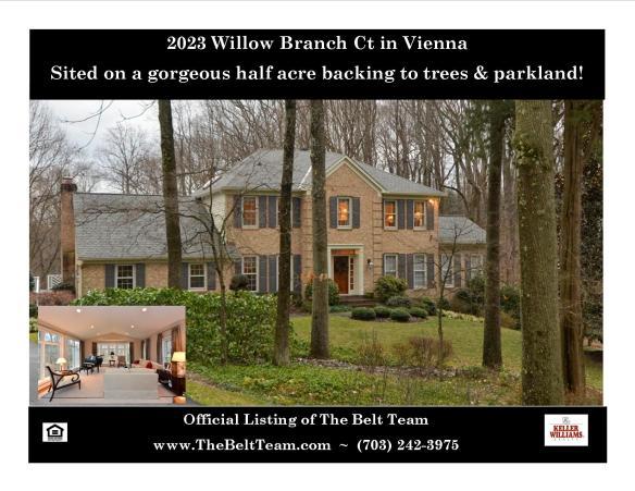 Vienna VA Luxury Home For Sale