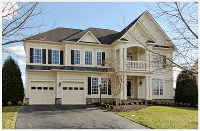 Homes for Sale Southern Walk Broadlands