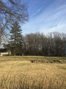 Lot For Sale Near Metro